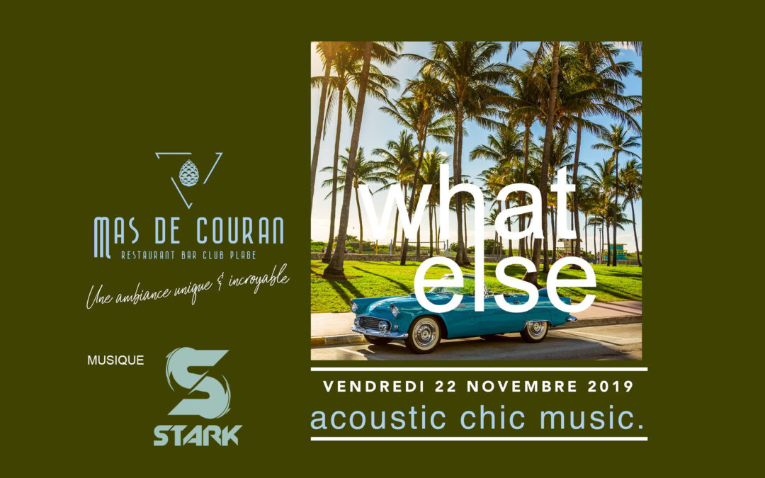 VENDREDI 22 NOVEMBRE → What Else en concert